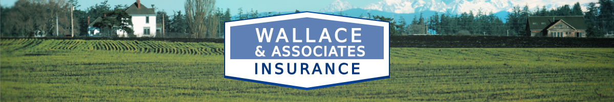 Welcome to Wallace & Associates